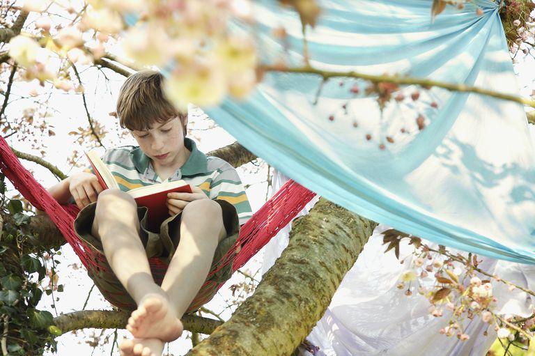 Boy Reading Book in Tree