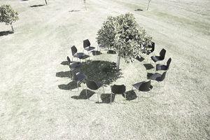 chairs around tree