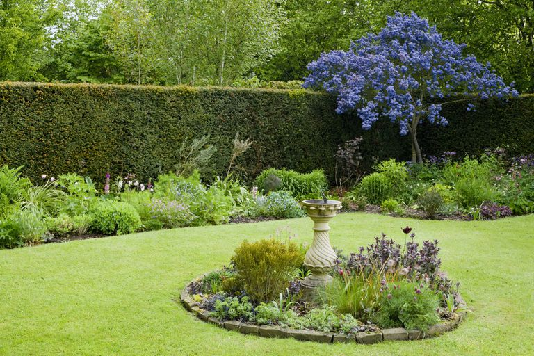 Spring garden with sundial in circular bed in centre of lawn with ceanothus (Ceanothus) 'Puget Blue'