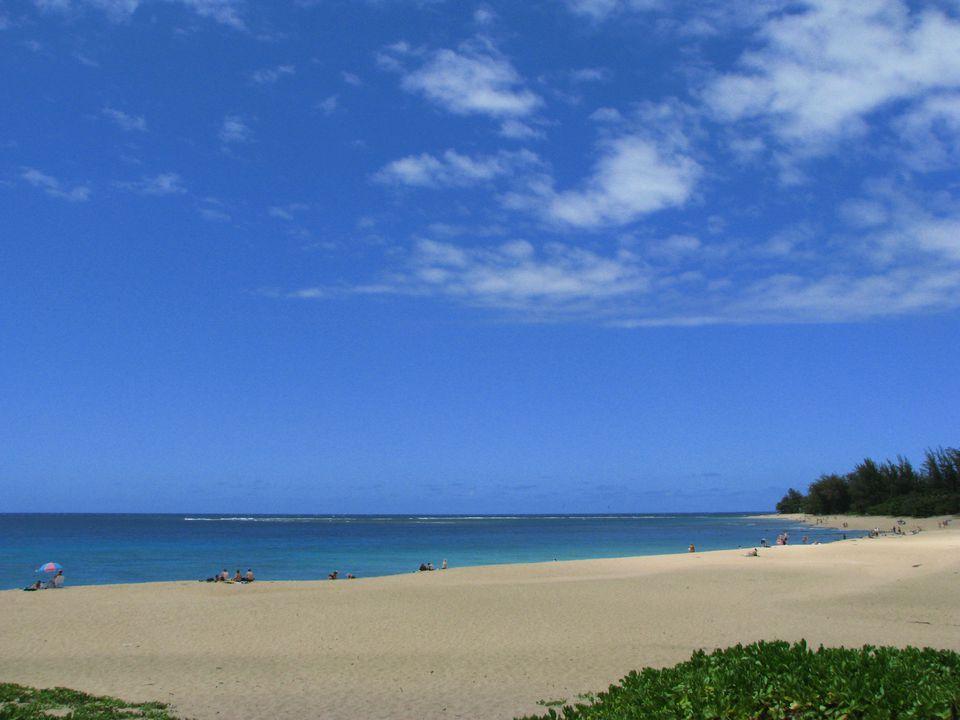 from Greyson gay in kauai