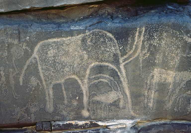 Rock engravings, Arakau, Niger