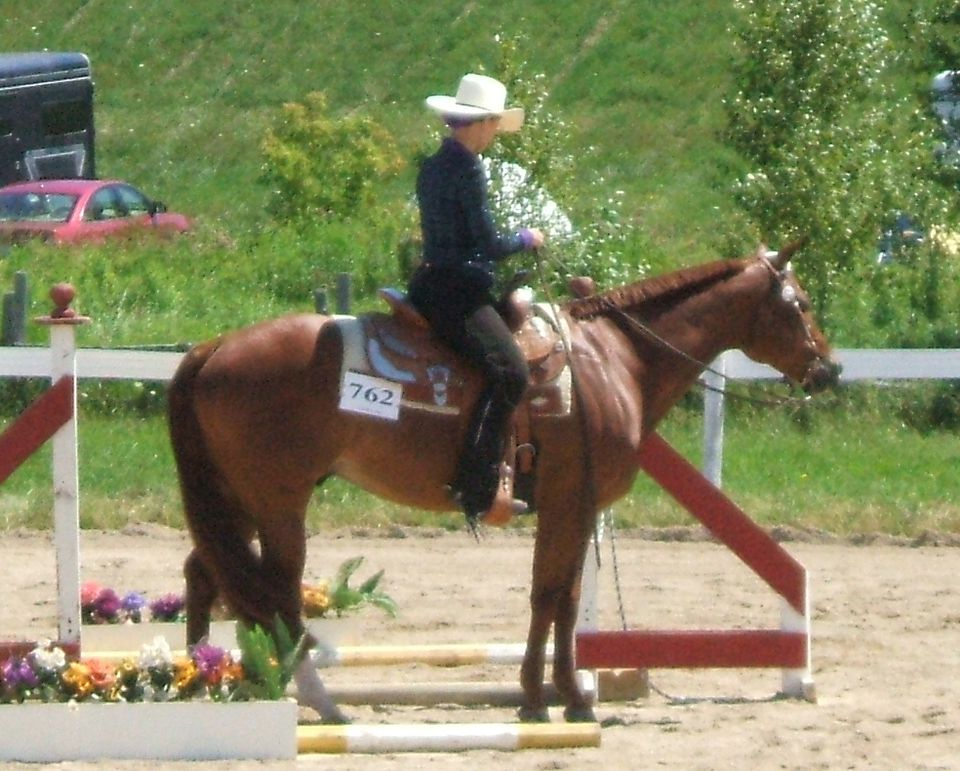 Woman riding western in a trail class.