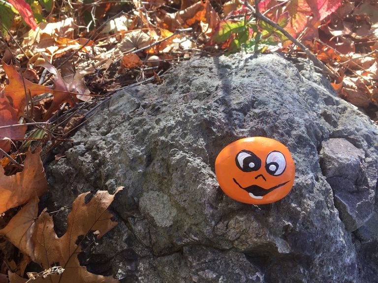 Orange painted stone with smiling face sitting on rock surrounded by leaves.