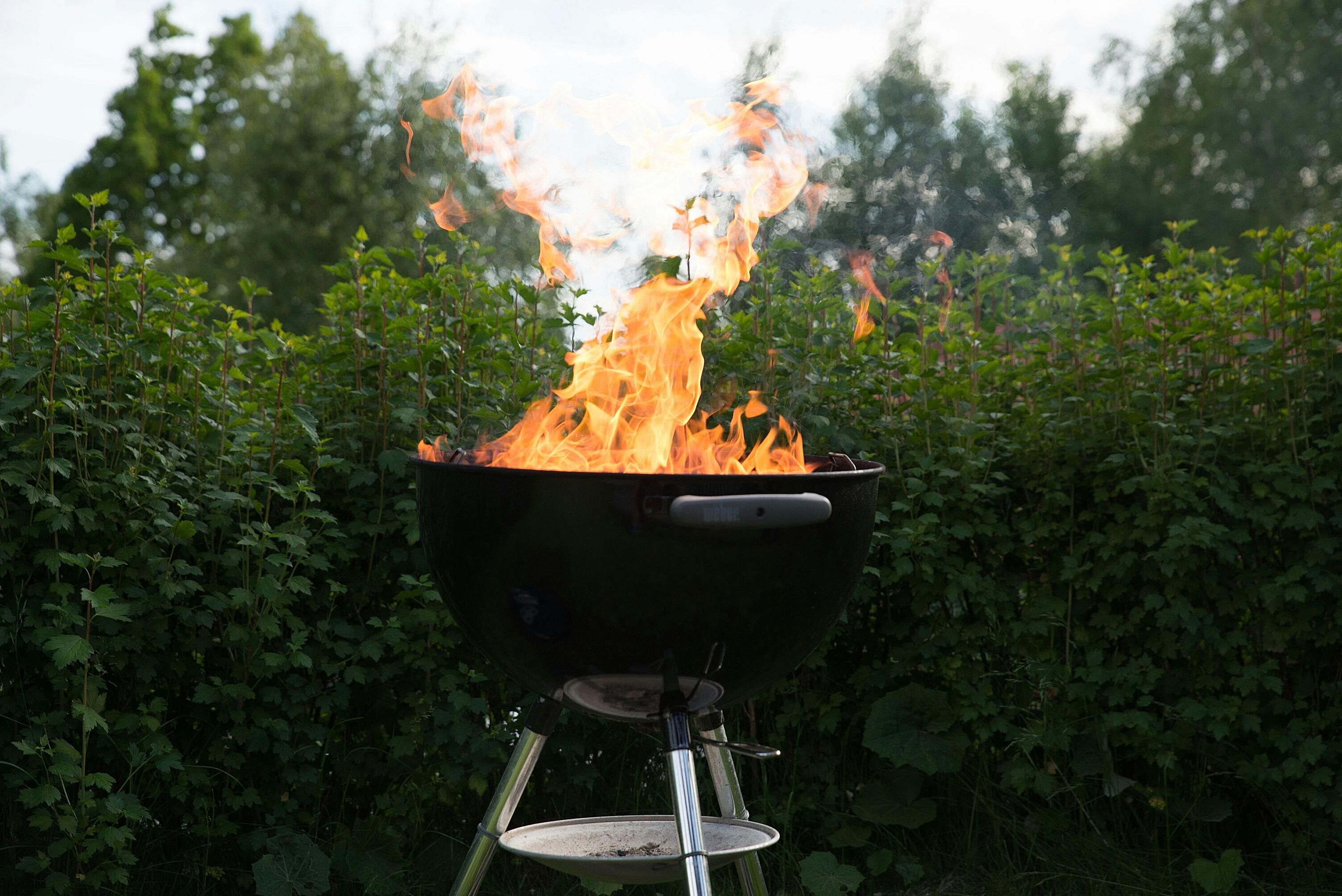 top 10 safety tips for barbecue and grilling