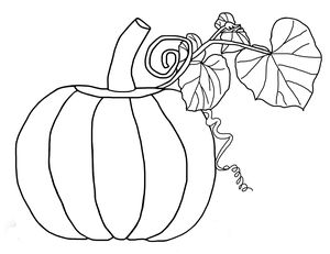 pumpkin coloring pages at best coloring pages for kids - Free Pumpkin Coloring Pages