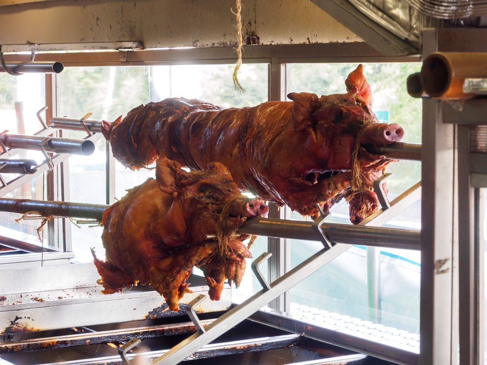 Roasted pigs at a lechonera in Guavate