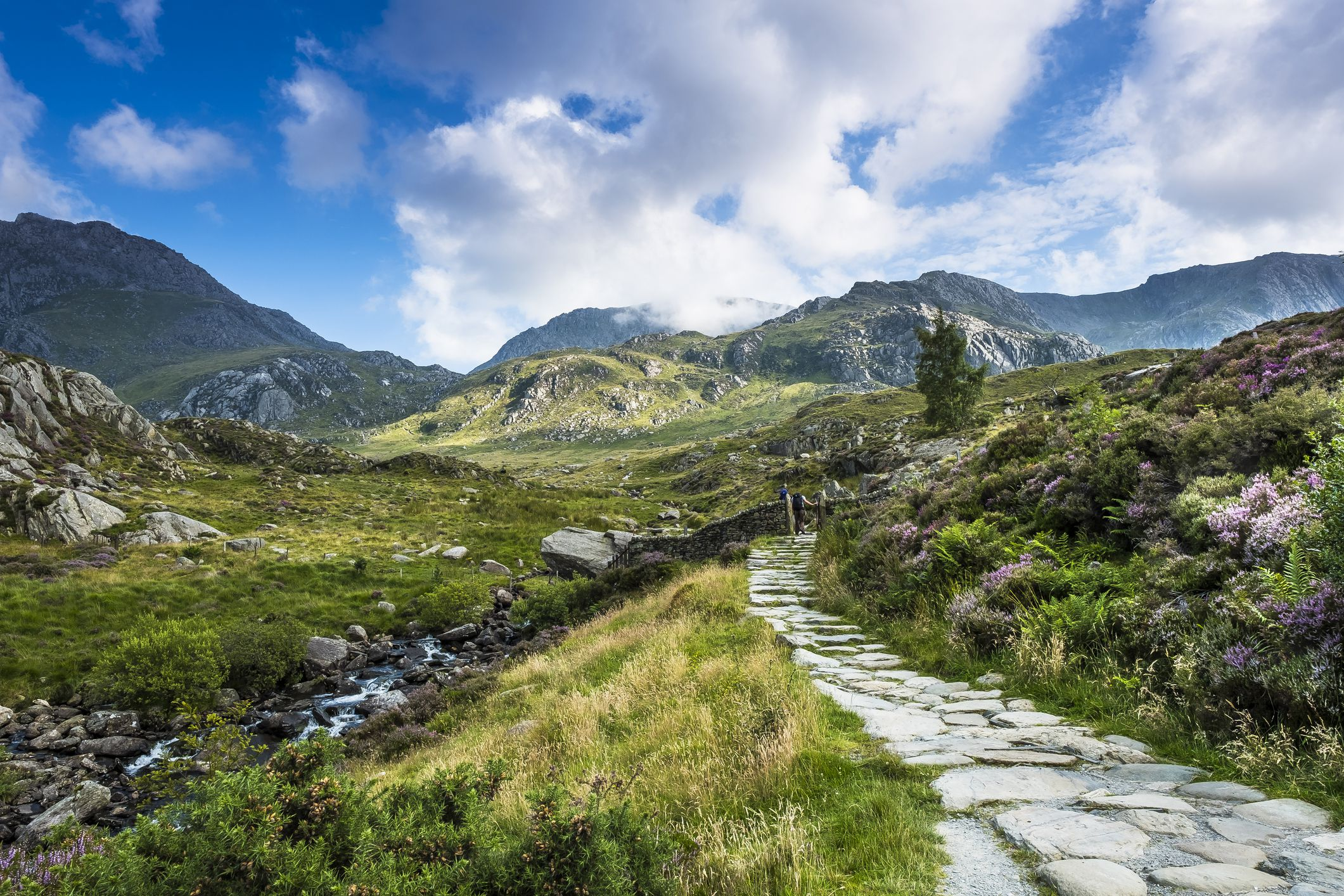 The Best 8 Campsites in Snowdonia National Park
