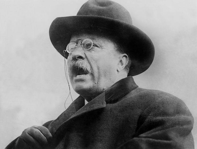 Theodore Roosevelt Printables