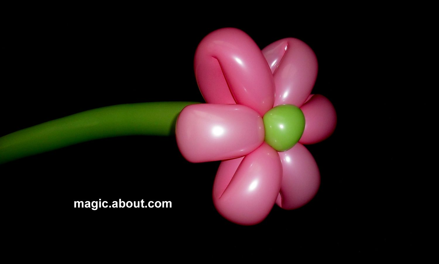 balloon animals for romantic occasions and valentine u0027s day