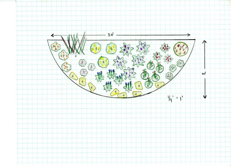 how to design a butterfly garden