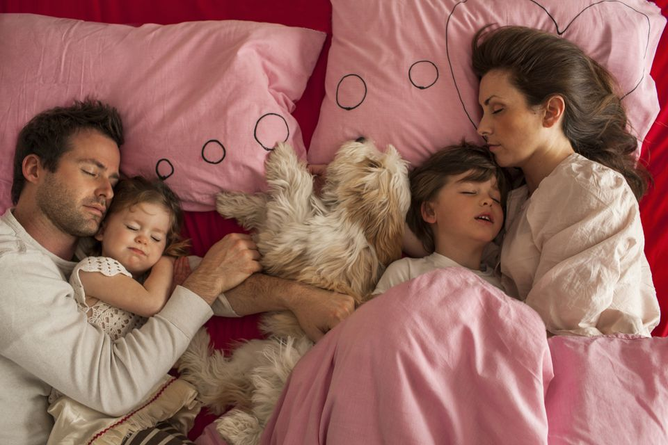 kids, parents, and dog in bed