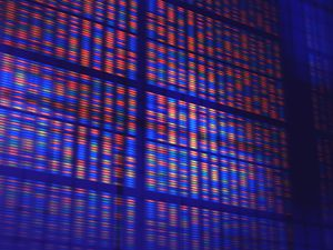 DNA microarray, artwork