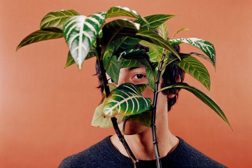 Man hiding behind plant