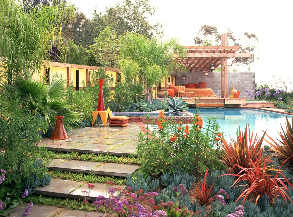 poolside plants discover the best types for your garden