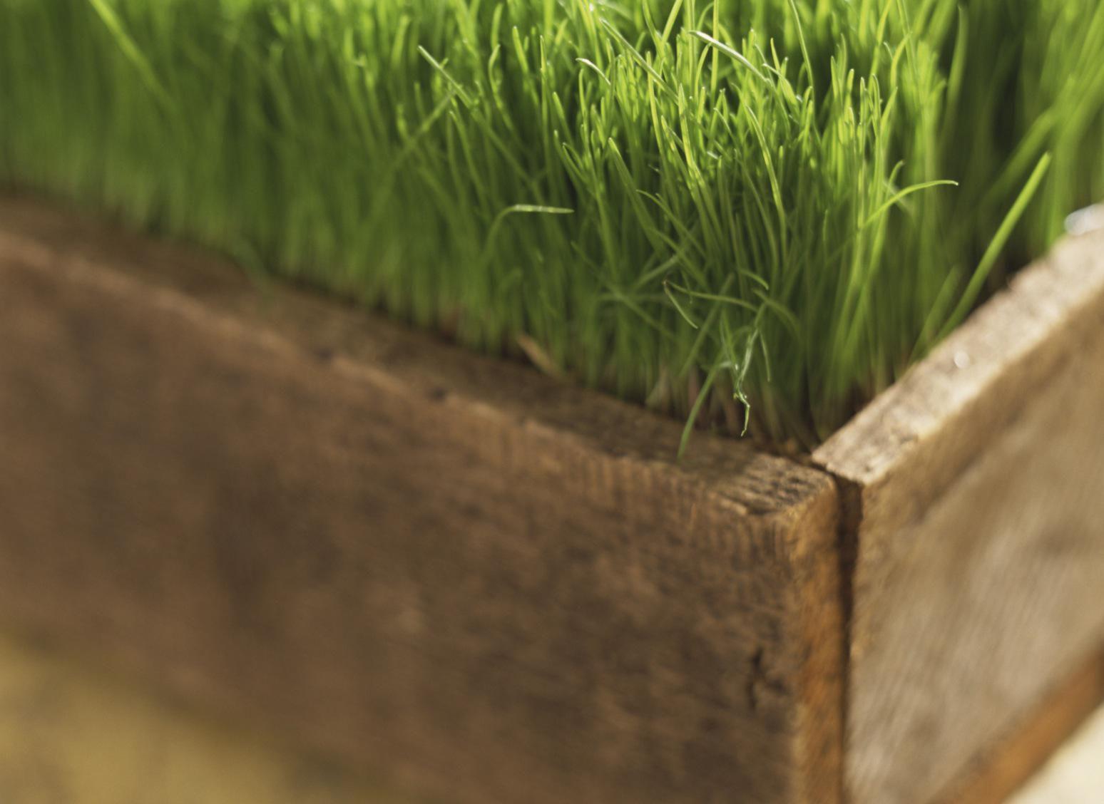 Deck Planters Ideas Patio