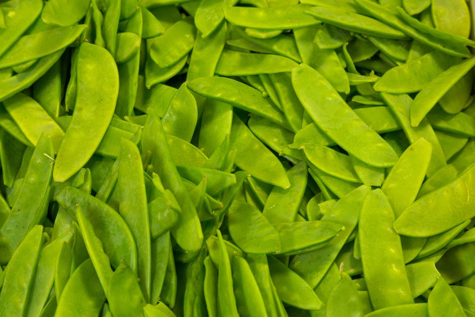 A vast pile of snow peas