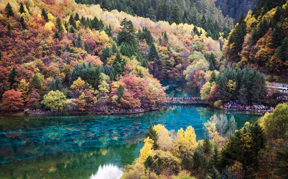 Incredible Colors Of Autumn Leaves And Water In The Lake With Dead Trees At Jiuzhaigou Valley National Park