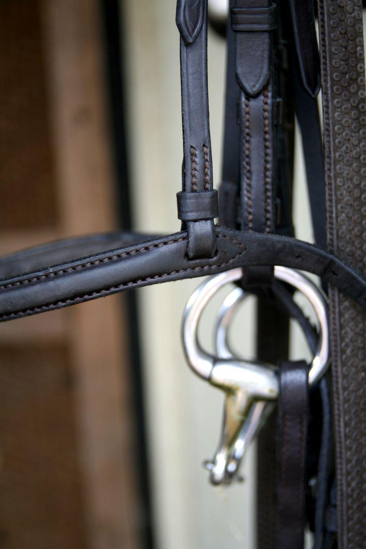 Horse bridle close up...
