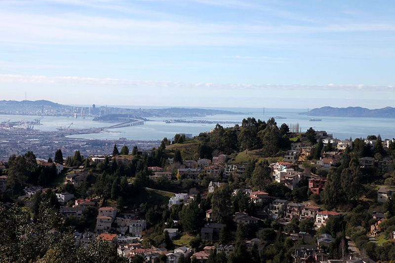 Oakland Hills View from Skyline