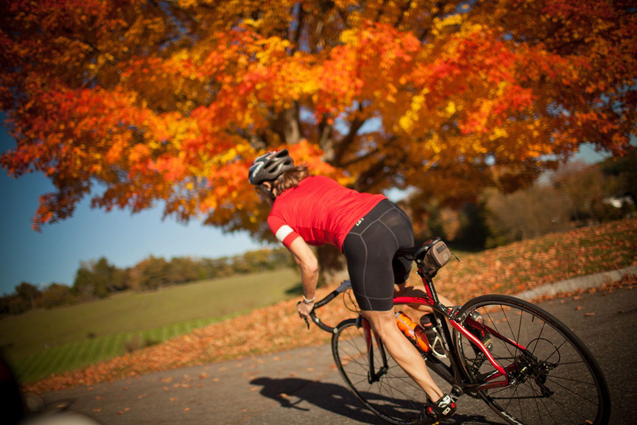 New England Fall Foliage Bike Tours Guided Trips