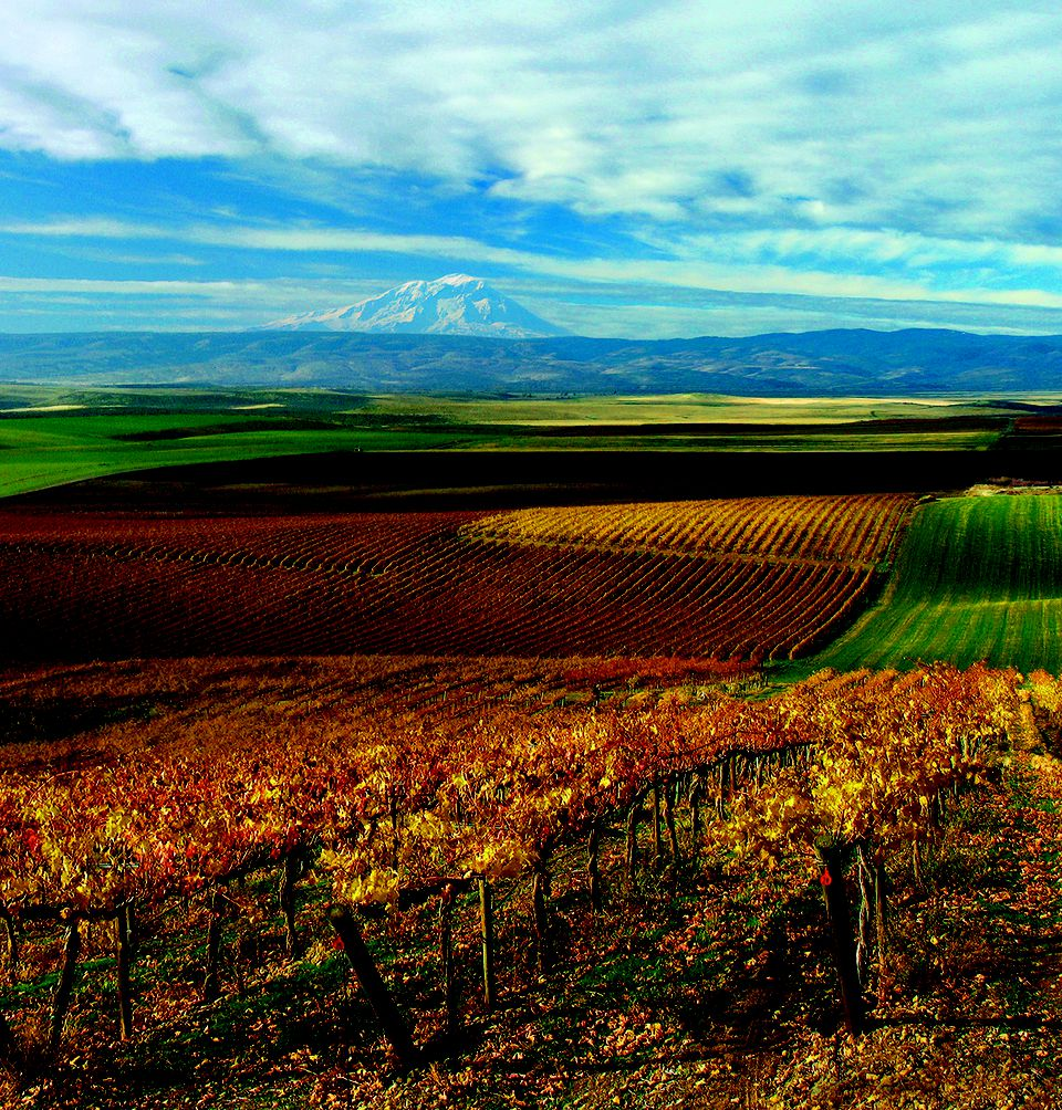 Photo of View of Yakima Valley