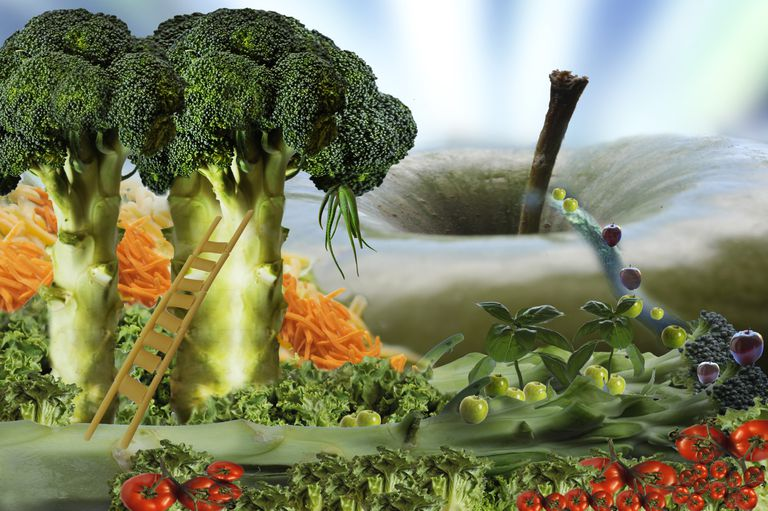 Brocoli como alimento anti cancer