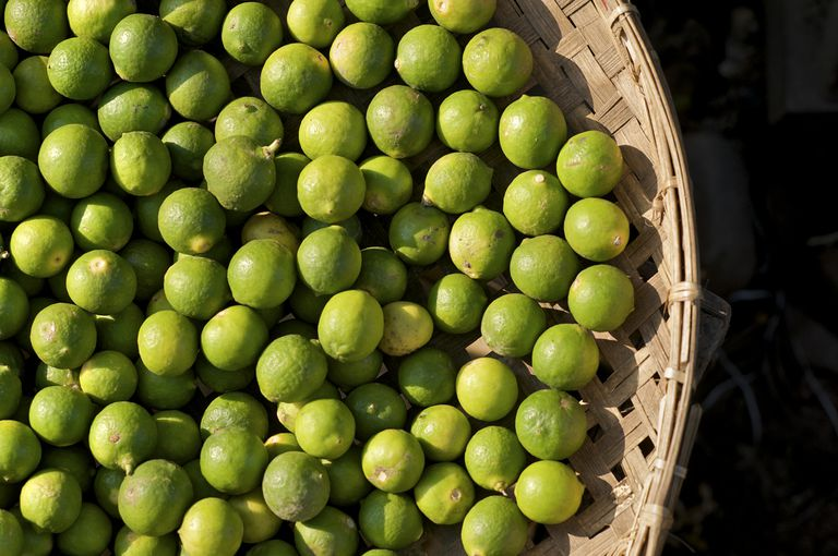 Limes for export