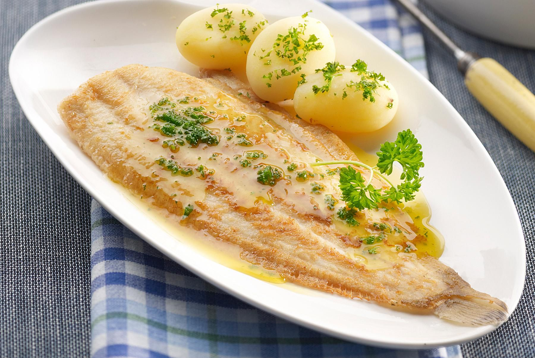 Fillet of sole with parmesan cheese sauce for Fish and cheese