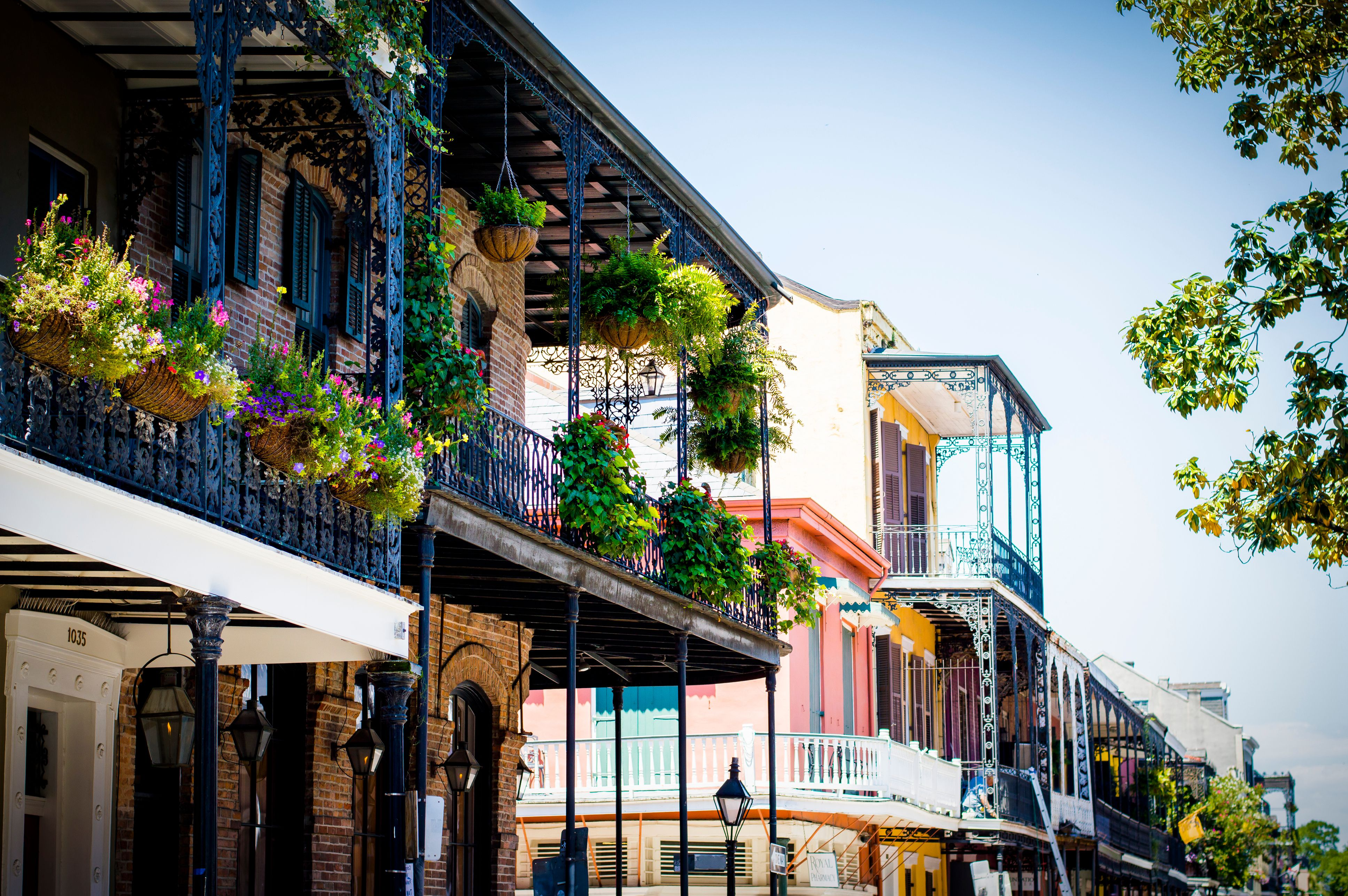 New Orleans Bed and Breakfasts in the French Quarter