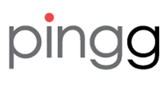 Screenshot of the Pingg logo