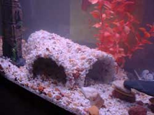 Diy aquarium projects for Homemade fish tank decoration ideas