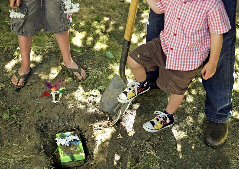 People burying pet
