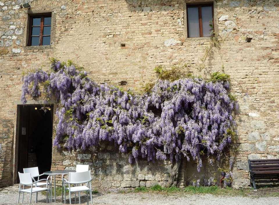 italy spring photo