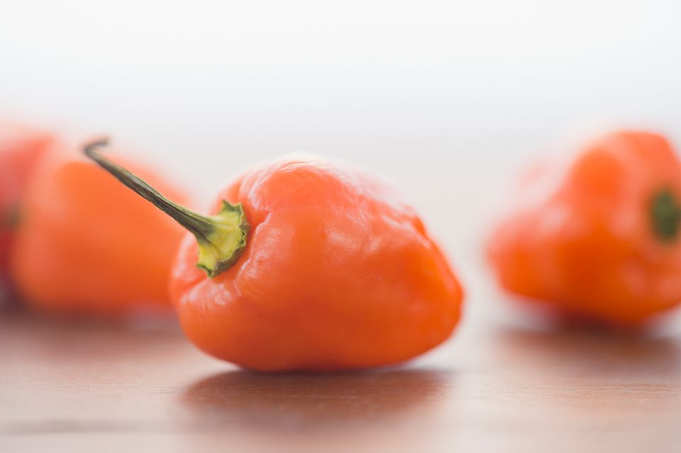 Habanero Pepper for a Habanero Martini Cocktail
