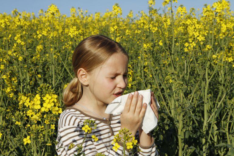Como prevenir alergias infantiles