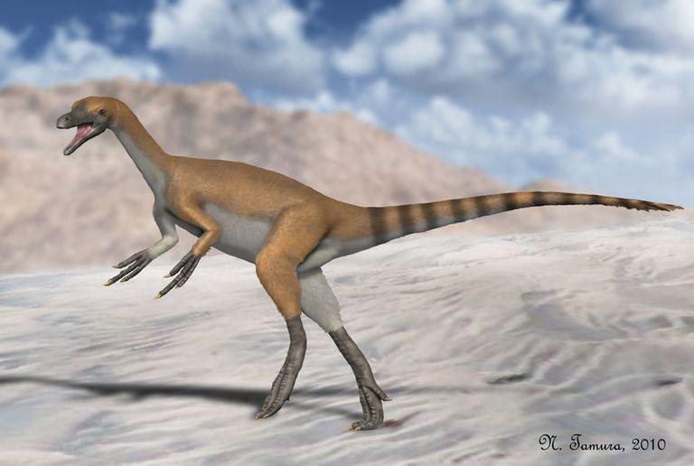 haplocheirus