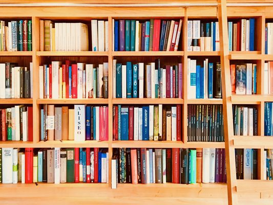 View of fully packed books shelves with ladder