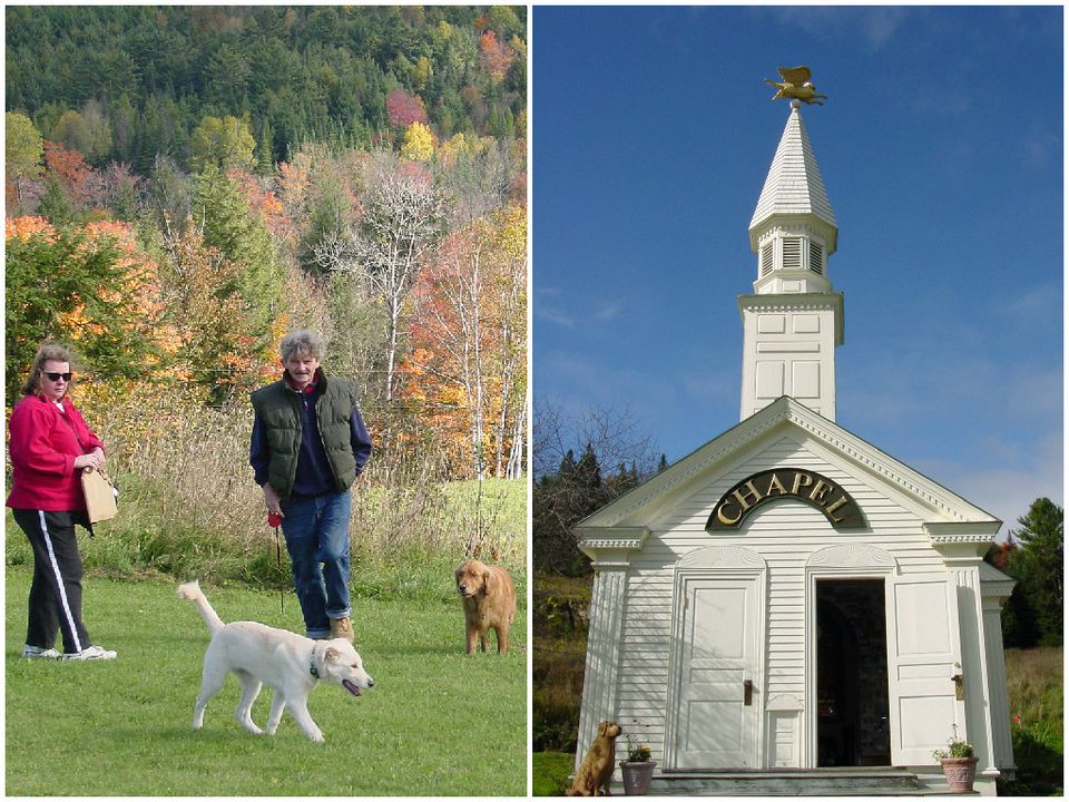 Dog Friendly Places To Stay In Vermont