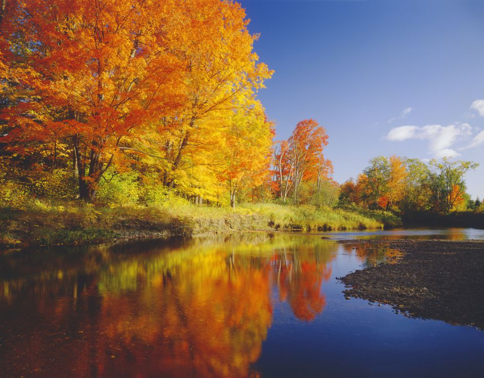 Tour New England in the Fall