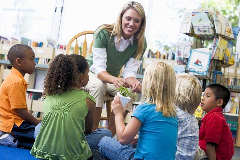 Kindergarten children learning about plants