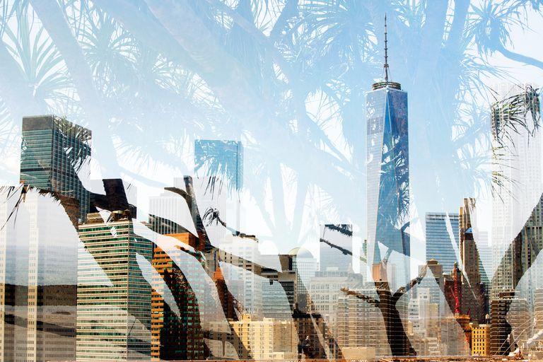 trees superimposed on city skyline