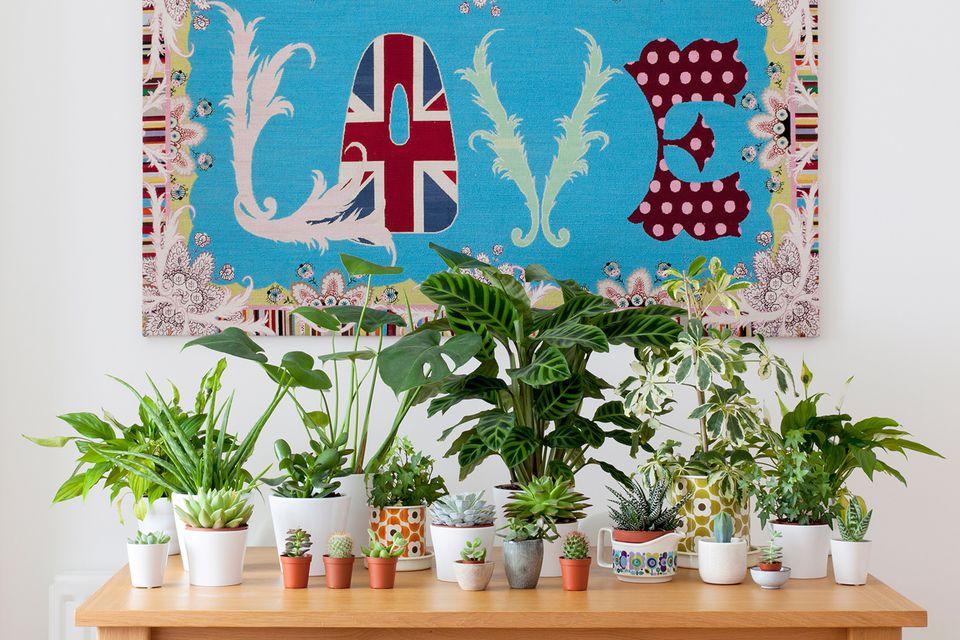 decor with plants