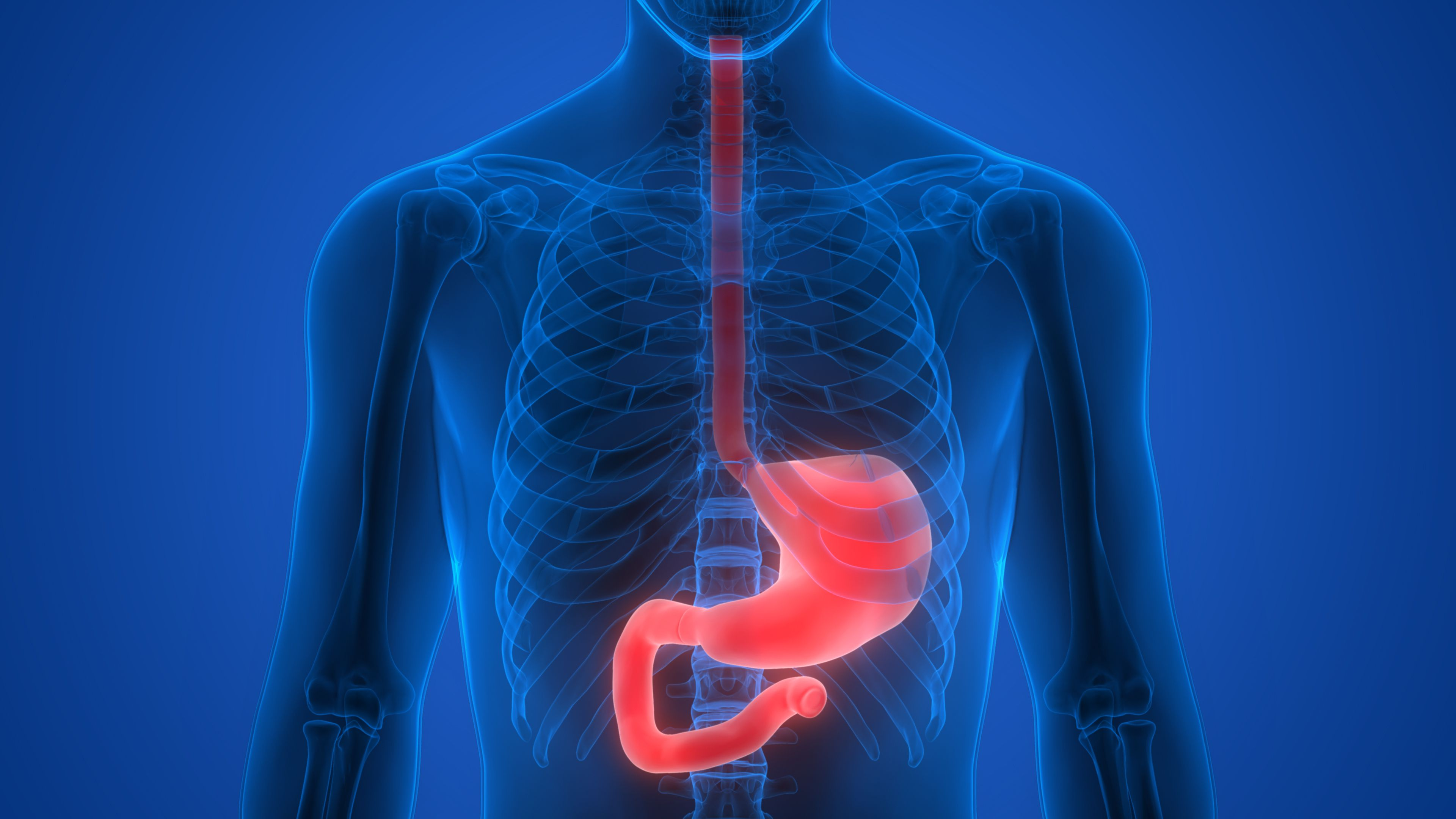 Diseases That Can Affect The Esophagus