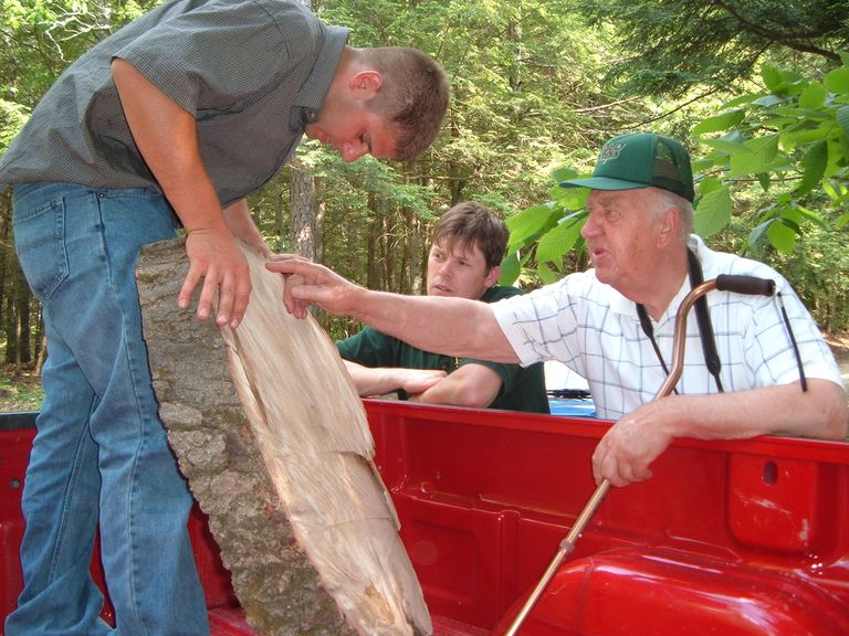 Dr. Alex Shigo (far right) explaining markings on an Oak section during one of his last symposia.