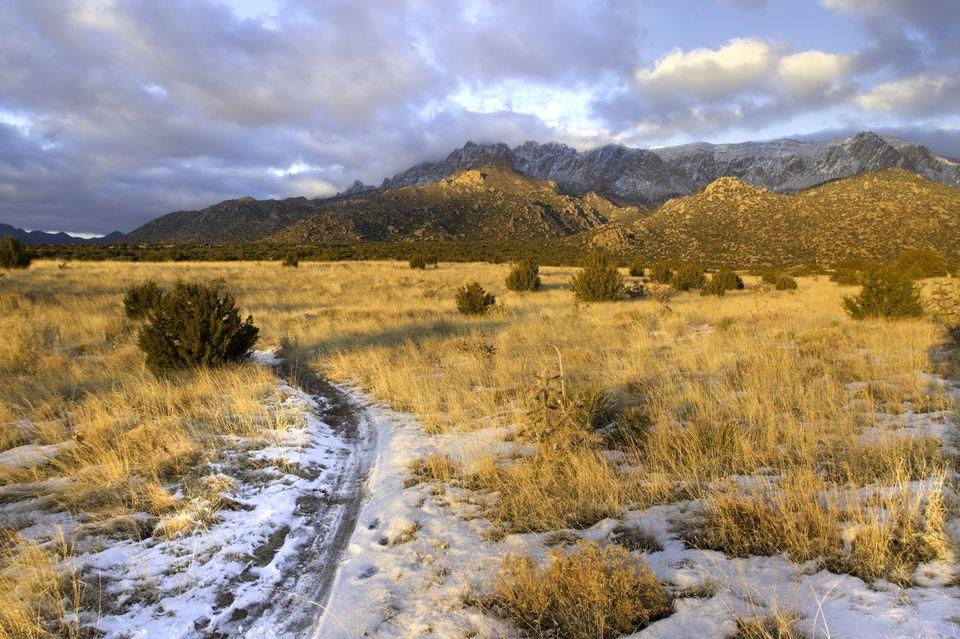 mountain landscape desert trail