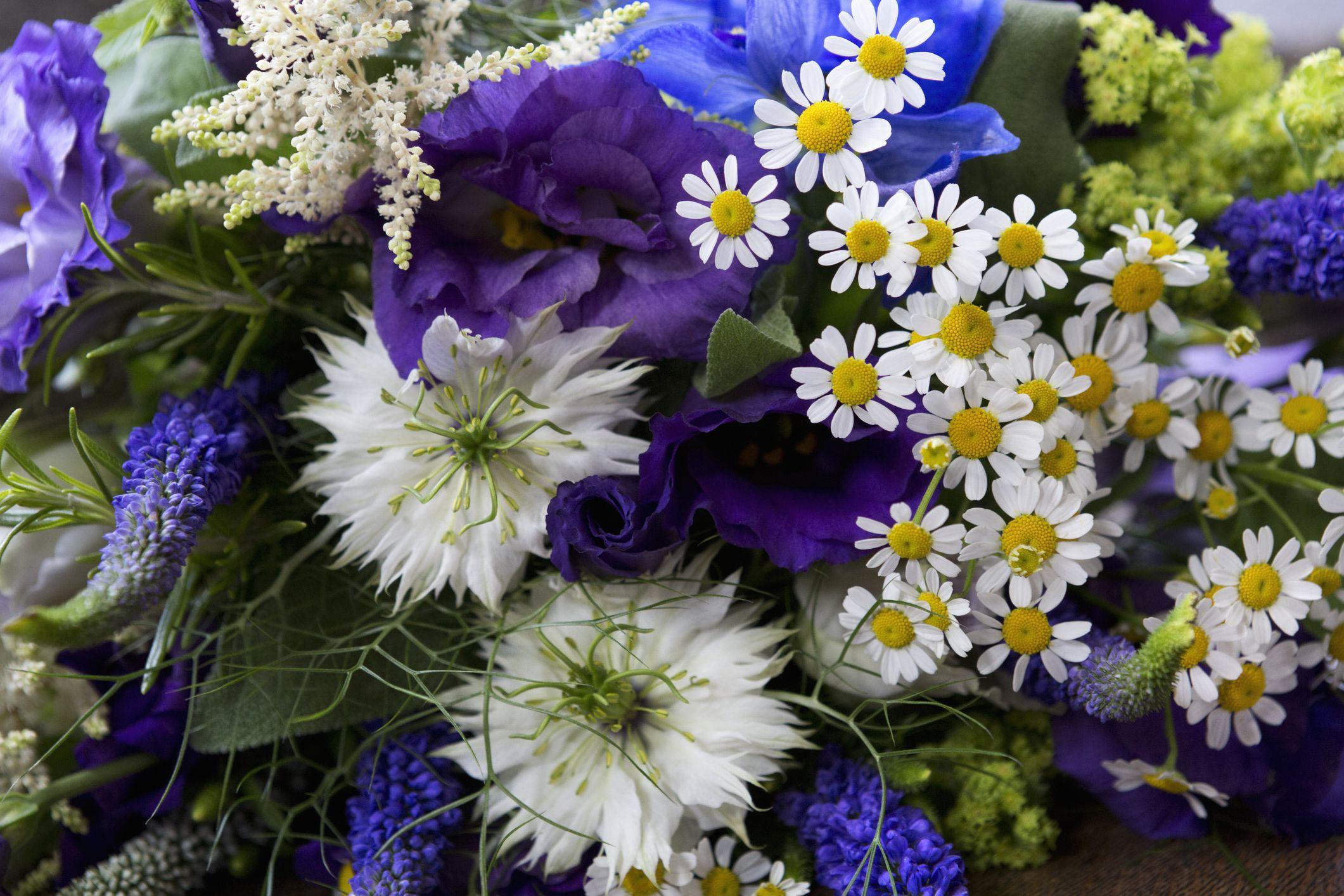 Blue Tulips Bouquet