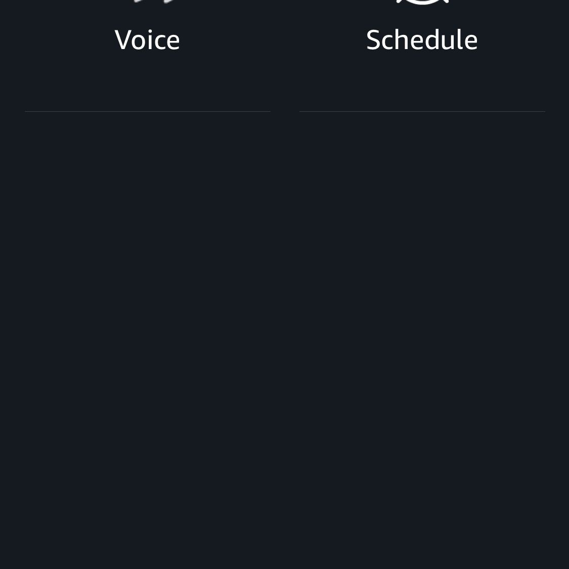 A screen shot in the Alexa app with Voice as an option.