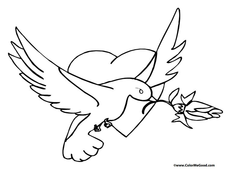 a dove carrying a rose - Valentine Coloring Book