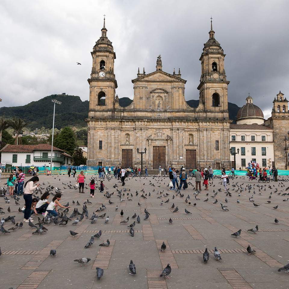 Bogotá, Republic of Colombia, August 3, 2015. -- Girls are feeding pigeons in front f Primatial Cathedral of Bogotá in Plaza de Bolivar.