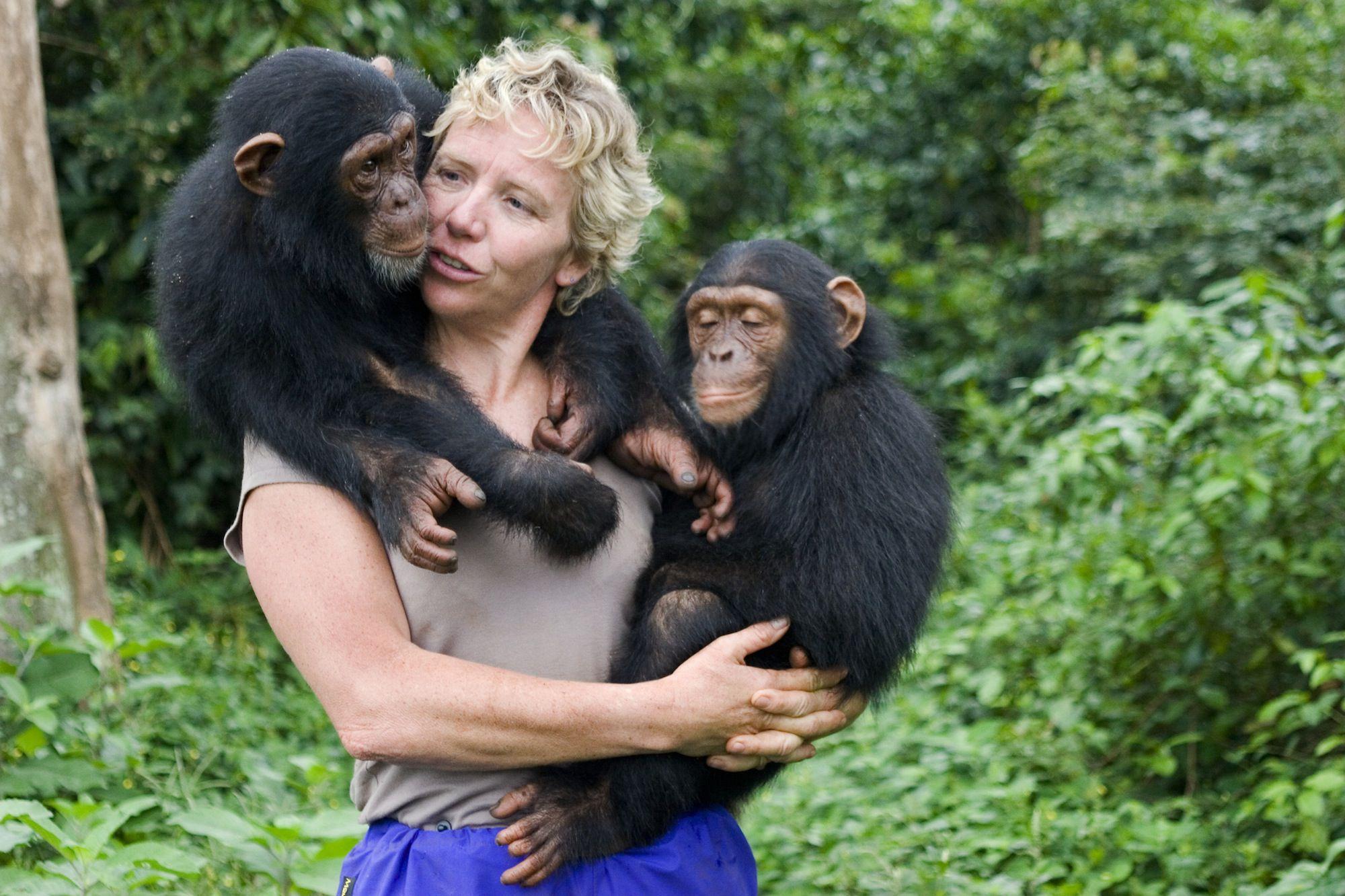 become one with the gorillas primatologist job outlook - Wildlife Biologist Job Description